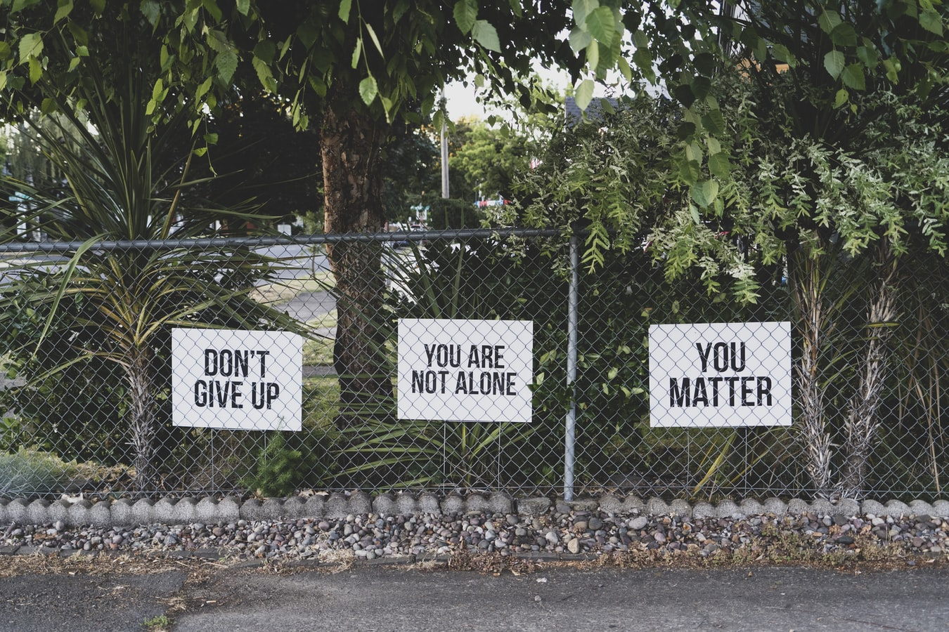 "Outdoor setting with three yard signs that read ""Don't give up"", ""You are not alone"", and ""You matter"""
